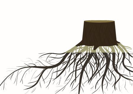 arbol raices: Tocón con raíces Vectores
