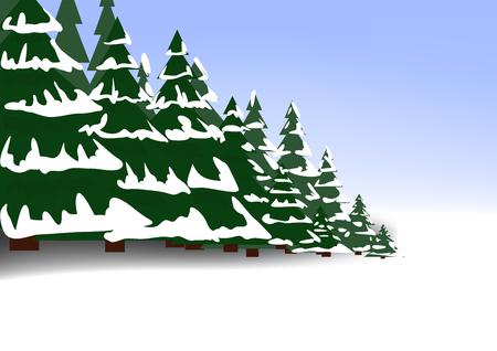 coniferous forest: Bosque de coníferas en invierno con la nieve Vectores