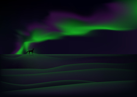 tundra: Visible aurora over snow-bound tundra Illustration