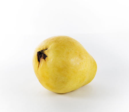 One guava fruit on a white background