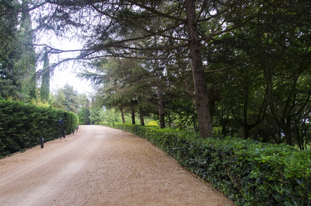 Dirt road in a beautiful park. Clotilde Gardens