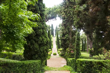 Green alley in the gardens of Clotilde Banco de Imagens
