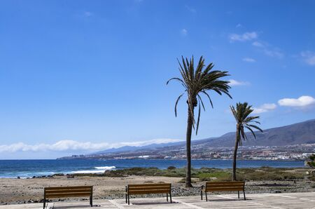 Tenerife coast landscape with empty benches and palm trees Archivio Fotografico - 132074035