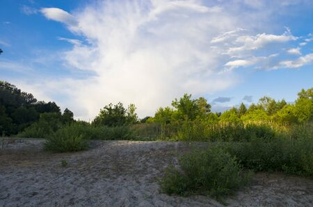 Forest landscape at the sand spit at sunset Archivio Fotografico