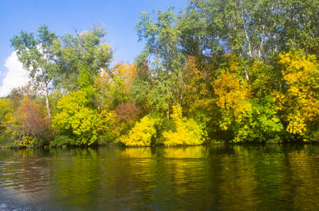 Trees by the river in autumn, landscape