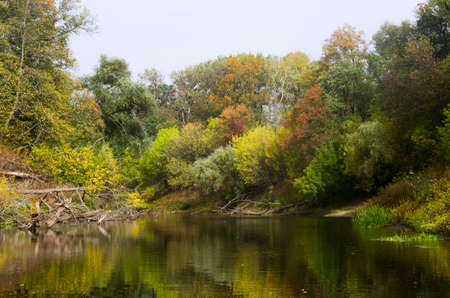 Autumn forest landscape along the banks of the river Archivio Fotografico
