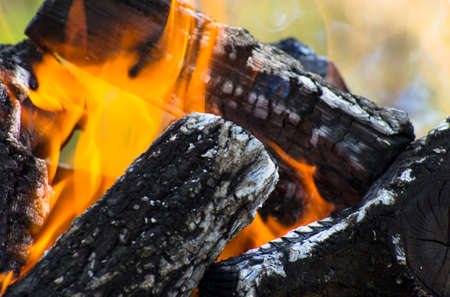 Dark logs of firewood burn in flames