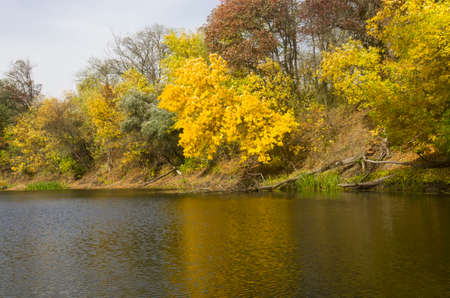 Autumn trees by the river, landscape Archivio Fotografico