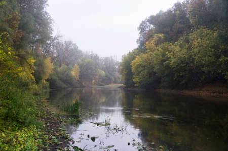 Autumn river in fog with trees on the bank
