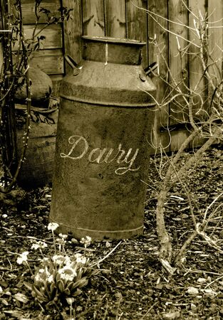 sackful: antique dairy can