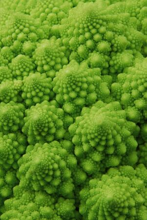 romanesco broccoli photo