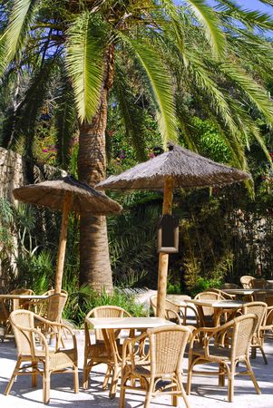 bask: tropical restaurant with palm tree Stock Photo