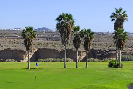 golf course exotical  in Tenerife,Canary island photo