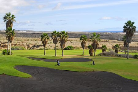 golf course with palm tree in Tenerife ,Canary island photo