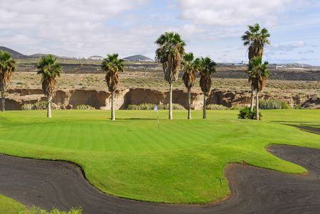 golf course with palm tree in Tenerife,Canary island photo