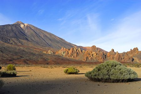vegatation: Teide volcano in Tenerife is the third largest in the world