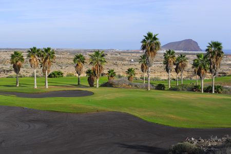 golf course with palm tree and  island view photo