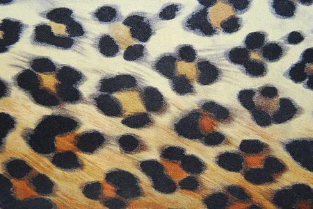 leopard pattern background Stock Photo - 6426434