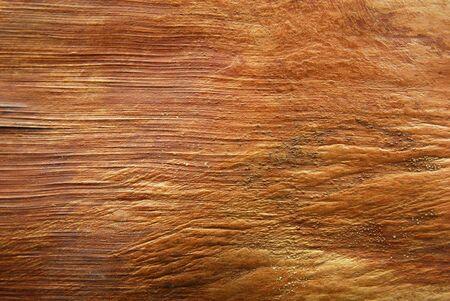 bark texture of palm tree Stock Photo - 13359650