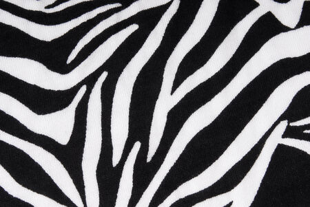 zebra fabric texture  photo