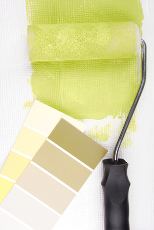 paint samples: paint roller and color chart choice
