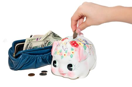 hand puts money into the  piggy  from purse  with dollars photo