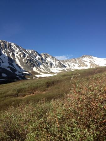 greys: Colorado at Greys Peak.