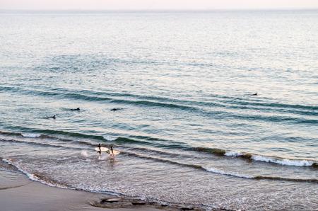 サーファーのサーフボードと水の中に実行しています。