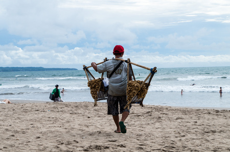 kuta: BALI, INDONESIA JANUARY 2017: Peanut seller walks along Kuta beach and tries to sell local peanuts to tourists with heavy load on his shoulders.
