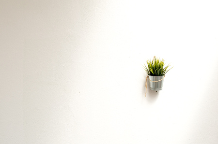Modern wall design with hanging plant.