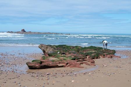 Moroccan man preparing to fish at Legzira, Morocco.