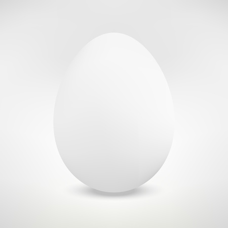 boiled eggs: Realistic Isolated Egg Illustration