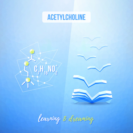 acetylcholine: Acetylcholine chemistry low poly educational design. Learning and library concept.
