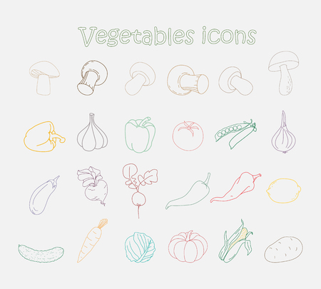 Vegetables outlined icons set. Set of flat vegetables icons drawing with color lines on white background.