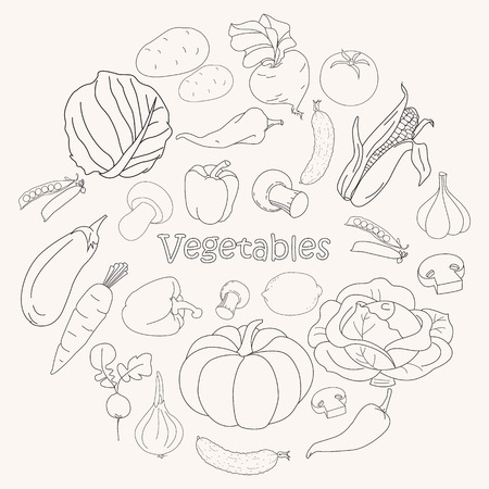 Set of various doodles, hand drawn simple sketches of different kinds of vegetables. Vector illustration isolated on white background. Collection of Vegetables sketch. Ilustração