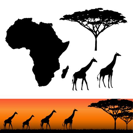 siluetas de elefantes: Mapa de África. África y Safari elementos. animales africanos, jirafas, siluetas vector. Paneles de siluetas africano con las jirafas africanas. ilustración vectorial Vectores