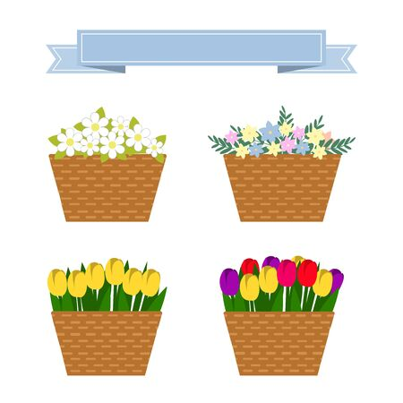 wattled: Set of baskets of flowers isolated over white. Wattled basket with beautiful flowers. Collection of spring and summer colorful flowers in beige basket. Vector collection