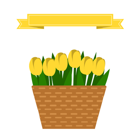 Vector set of yellow tulips in beige basket. Wattled basket with beautiful flowers. Collection of spring and summer colorful flowers. Bouquet of yellow tulips.