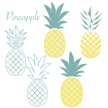 Set of different pineapples. Tropical and exotic fruits. Flat Vector illustration.