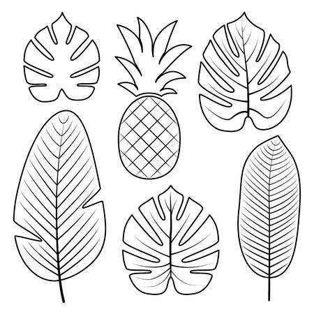 Tropische palmbladen en ananas geïsoleerd op een witte achtergrond. Overzicht vectorillustratie. Jungle bladeren. Gebruikte illustratie voor kleurboek, posters, uitnodigingen. Stock Illustratie