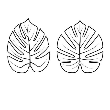 Tropische palmbladen die op witte achtergrond worden geïsoleerd. Overzicht vectorillustratie. Jungle bladeren. Gebruikte illustratie voor kleurboek, posters, uitnodigingen.