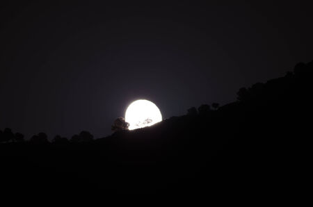 cliff edge: Moon siluoete of a cliff edge with trees Stock Photo