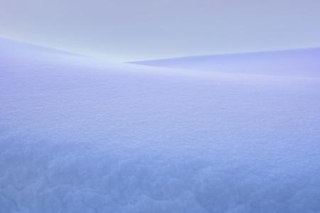 snow wilderness. snowy graphics