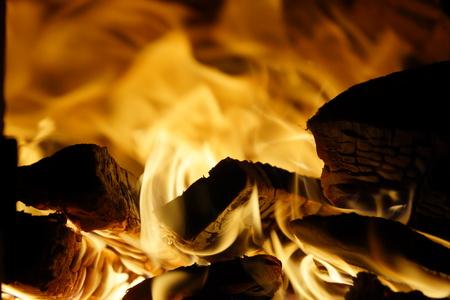 fire wood. burning wood. fireplace