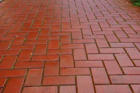 red paving slabs after rain. Architecture building. Stock Photo