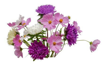 flower arrangement bouquet of white purple asters and pink white cosmos isolated on white background closeup