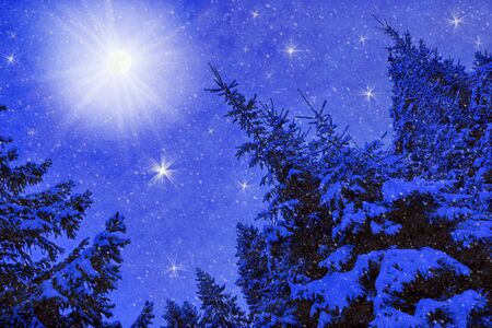 moon winter night landscape in the forest of spruce falling snow. christmas postcard