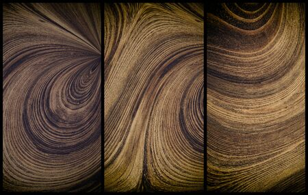 wood texture surface pine ring circles geometry  wave modern design of cafes canteens snack bars menu for printing