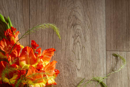 flatlay background for school. red orange gladioli fire color on a wooden background closeup