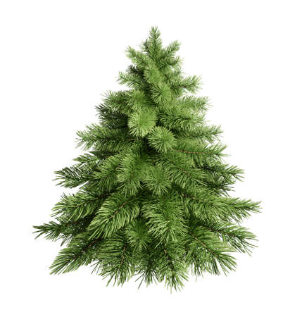 3D render fluffy green Christmas tree isolated white. photorealistic fir-tree.